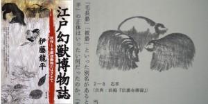 『江戸幻獣博物誌』
