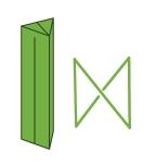カヤツリグサの四角形