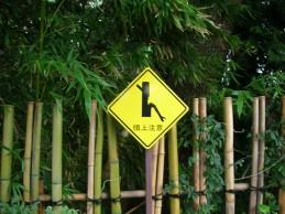 危険な竹薮
