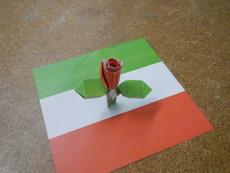 イタリアの薔薇