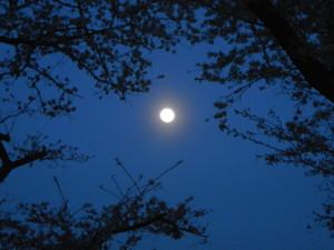 如月の望月