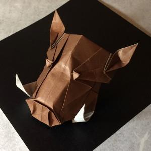 シシガシラ(猪)